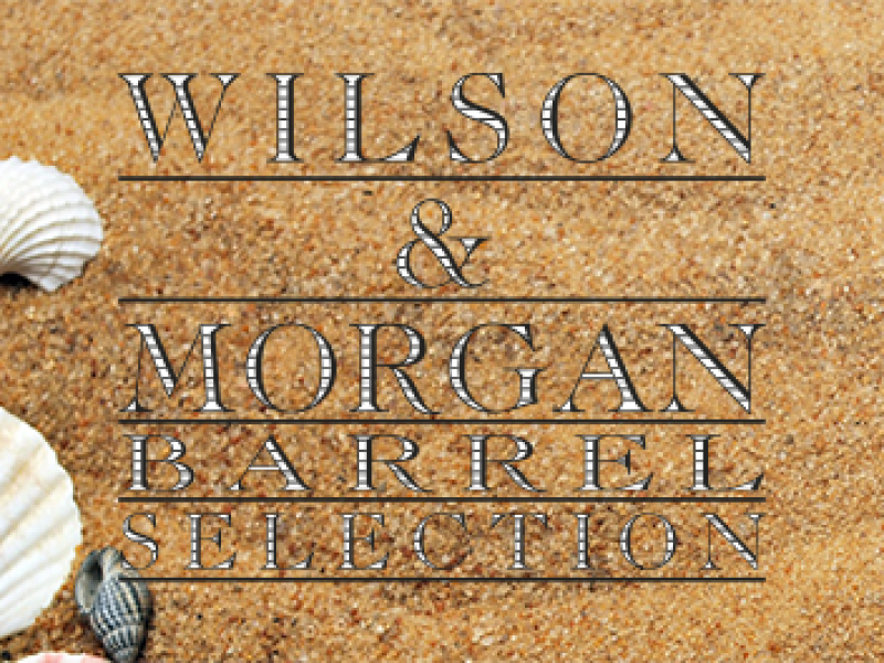 Wilson & Morgan – Summer 2019 News