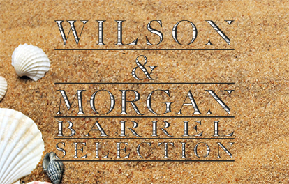 Wilson & Morgan – Summer 2019 News